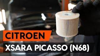 Cambiar Tubo flexible de frenos delanteros y traseros CITROËN XSARA PICASSO (N68) - instrucciones en video