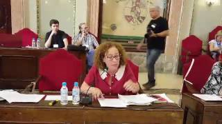 Pleno mayo 2017 - Plan Especial Cabezo de Torres (II)