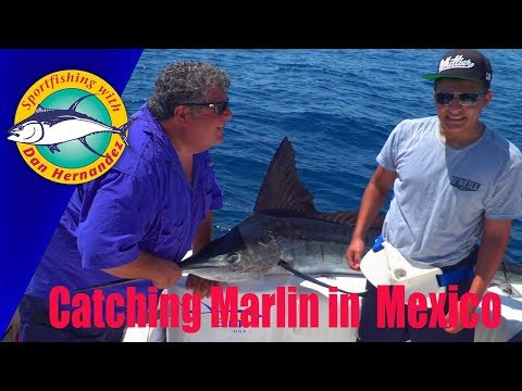 Marlin Fishing In The East Cape, Mexico | SPORT FISHING