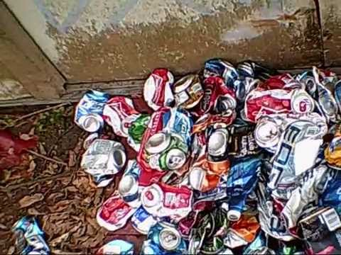 aluminum can collecting from off the side of the roads