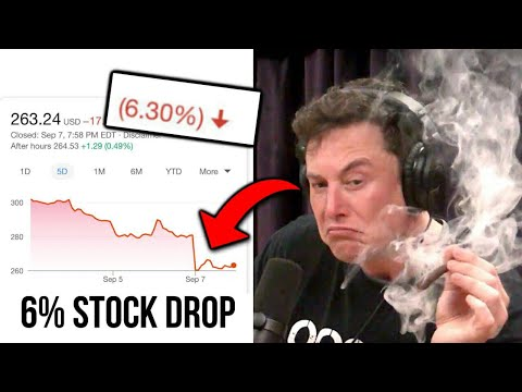 ELON MUSK GOT HIGH AND DROPPED TESLA STOCK BY 6%