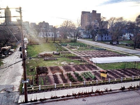 MUFI 2013: The Year of the Detroit Urban Farm