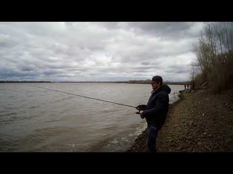 Рыбалка в апреля на оби