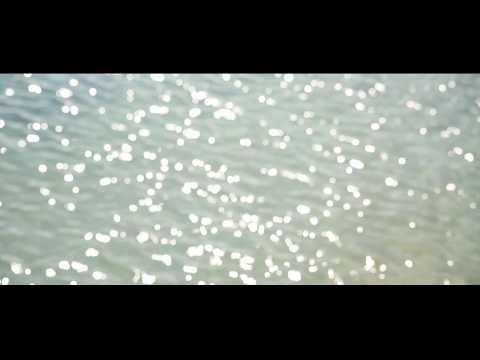 Le Monde du Silence revisité - Film Completde YouTube · Durée:  50 minutes