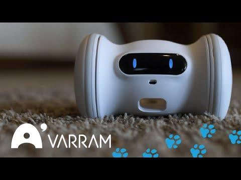 hqdefault - VARRAM Pet Fitness: a smart robot companion for your pet