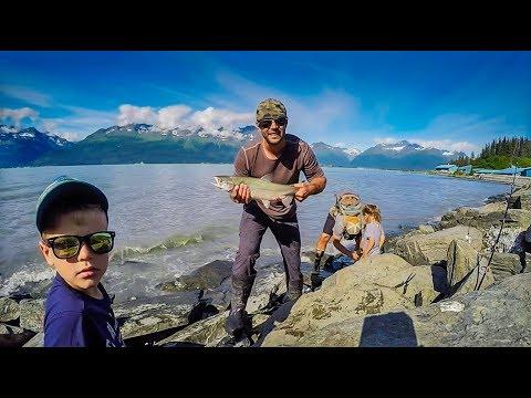 Fishing Alaska: Snagging At Allison Point, Valdez 2018