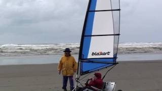 Blokart beach scene, Ocean Park, Washington