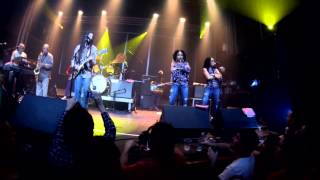 Julian Marley & The Wailers Reunion Band - THE HEATHEN - 2015