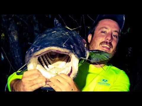 Chumming For Catfish - Episode 1