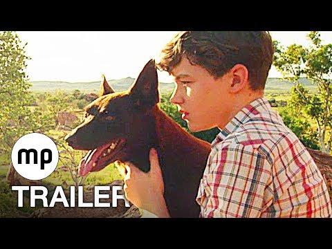 Red Dog – ein Held auf vier Pfoten Josh Lucas, Rachael Taylor, Rohan Nichol