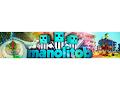 YouTube Live Streaming from DJI PHANTOM 4