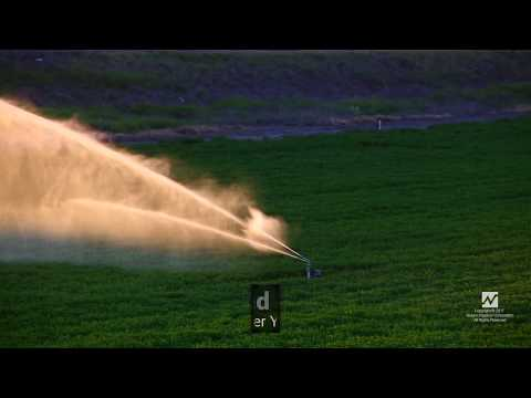 8 Videos About Rain Gun Irrigation That'll Make You Cry