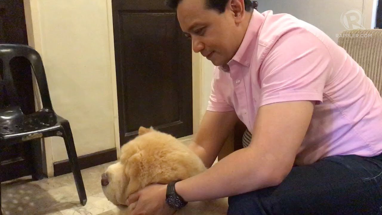 Image result for trillanes dog