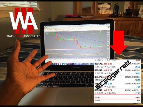 W3a forex trading