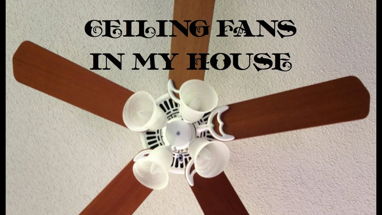 Ceiling Fans In My House Volume 1 Youtube