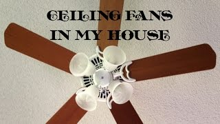 Ceiling Fans In My House (Volume 1)