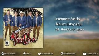 Velcha - Herido de Amor (Lyric Video Oficial)