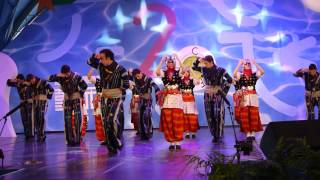土耳其Hacettepe University Children & Youth Folk Dance Group:Gaziantep Dance   Halay