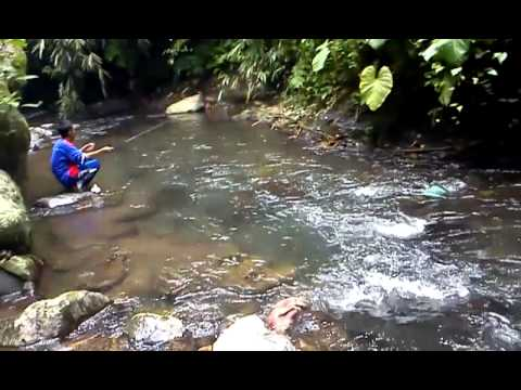 mancing mania mantap Travel Video
