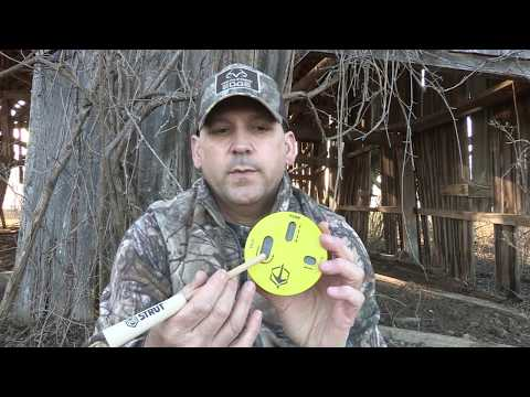 Best Beginner Turkey Calls - What is so exciting about turkey hunting?