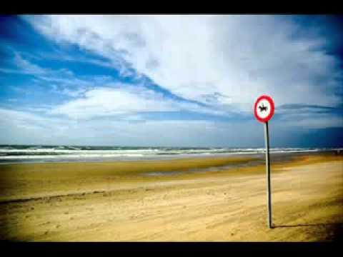 Die Fantastischen Vier Tag am Meer unplugged