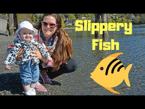 Slippery Fish Song For Children | Songs For Kids #5