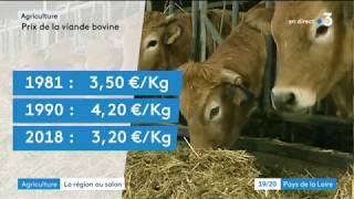 Agriculture : la région au salon - 19 20 France 3 Pays de la Loire 01/03/18