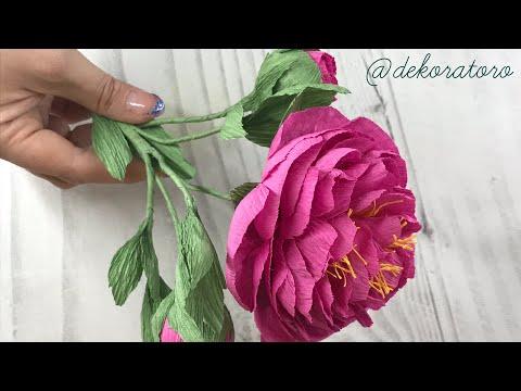 Шикарный пион из бумаги / куст пиона/ dekoratoro DIY