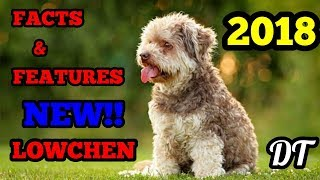 HELLO GUYS.I AM UPLOADING A NEW VIDEO .IF LIKED THEN PLEASE SHARE ,...