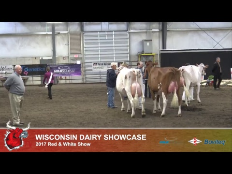 Wisconsin Dairy Showcase 2017 Red & White Show