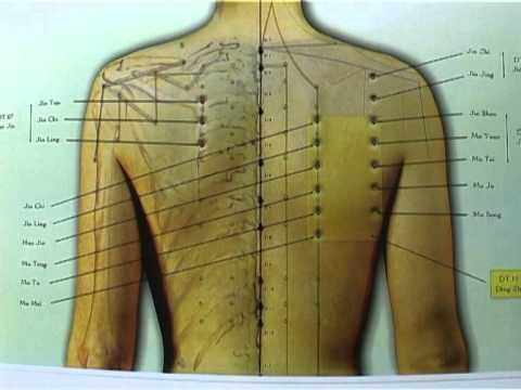 acupunctura de tratament de la varicoză