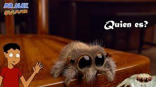 Lucas la araña, ¿quien es?, ¿que es? , ¿porque creció tan rápido? | Lucas the Spider