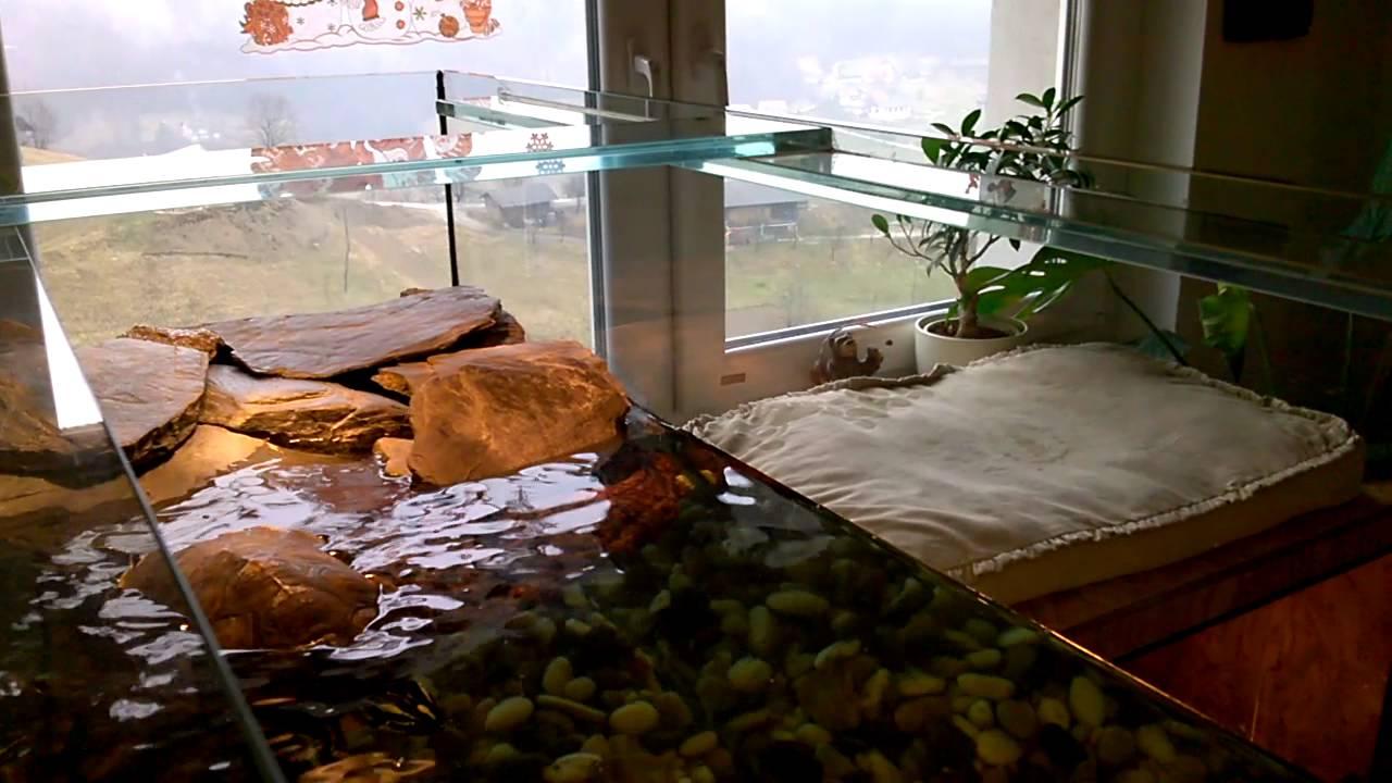 aquarium unser tierchaos in slovenien besteht aus ca 40. Black Bedroom Furniture Sets. Home Design Ideas