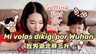 Mi volontas dikiĝi por Wuhan我为武汉胖三斤 Geting fat for Wuhan