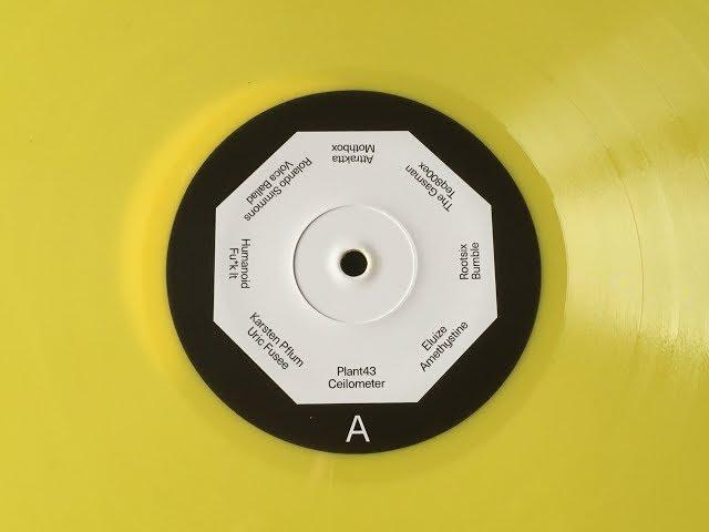 Rootsix -- Bumble