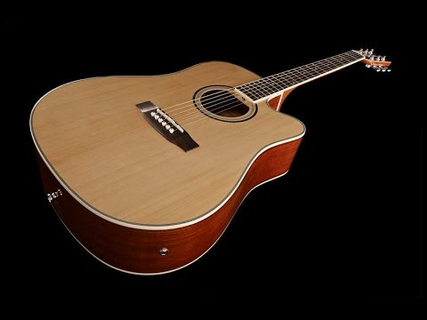 Harley Benton D120CE NT Review by John Robson Guitar Tuition