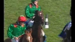 Sinndar wins 2000 Prix de l'Arc de Triomphe