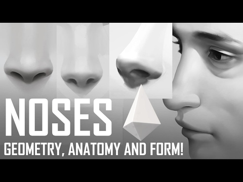 Critique Hour! Noses! Geometry, anatomy and form!