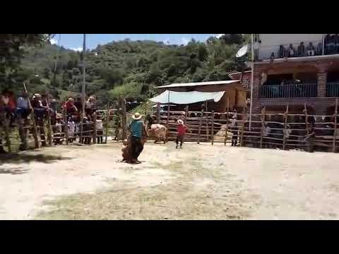 Jaripeo en San Juan Yagila 2017 thumbnail