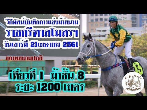 Thailand horse racing 2018 April, 21 |  ม้าแข่งเที่ยว 1 ชั้น 8