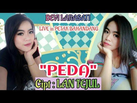Lagu Dayak Kalteng PEDA Cipt : LAN TEJUL,Live Panggung Desa PETAK BAHANDANG Art : DEVI LARASATI