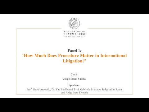 International Law and Litigation - 1 - How Much Does Procedu