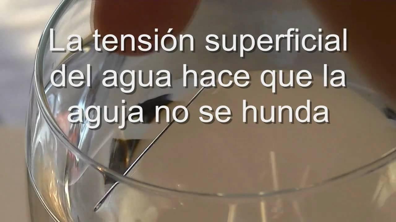 Experimentos caseros sencillos con agua la tension superficial aguja flotante youtube