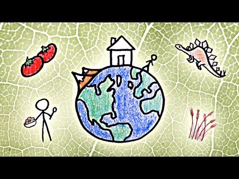 MinuteEarth: The Story of Our Planet