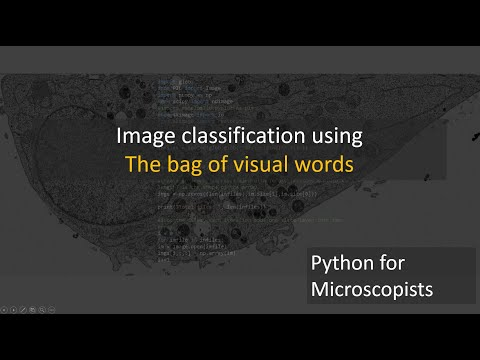 69 - Image Classification Using Bag Of Visual Words (BOVW)