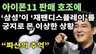 애플 아이폰11 판매 호조  삼성 OLED 주문 폭발  재팬디스플레이JDI 파산 위기