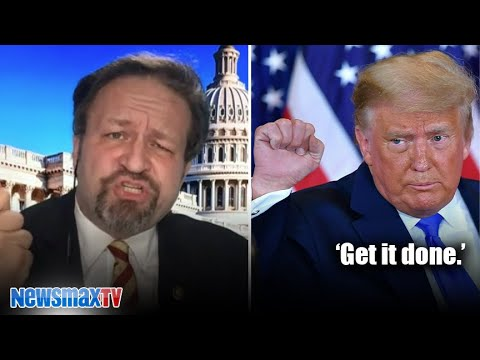 Why Are They Still Counting Sebastian Gorka Political Social Network