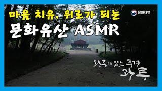 [문화유산 ASMR] 코로나로 지친 몸과 마음, 광릉에…