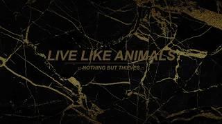 Live Like Animals Nothing But Thieves Lyrics