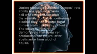 DOES ALCOHOL KILLS BRAIN CELLS??? latest reports!!!!